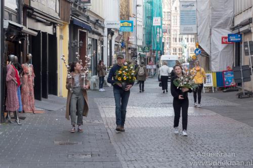 Antwerpen -3